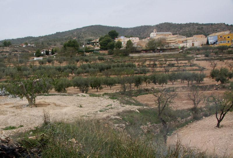 valenciano Raspay