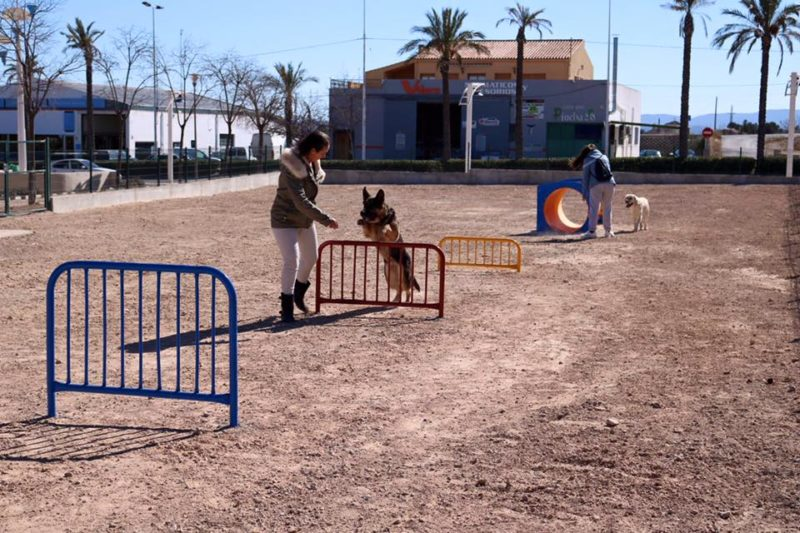perros parque canino yecla