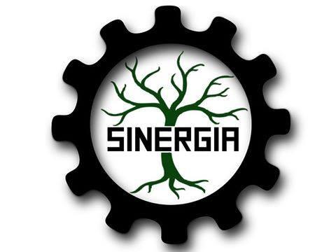 sinergia colectivo