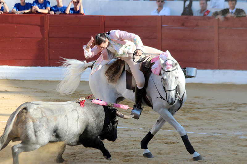 corrida toros yecla