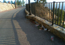 limpieza cerro del Castillo