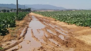 Pérdida de agua cerca de cultivos intensivos. Fuente: Plataforma Salvemos el Arabí y Comarca