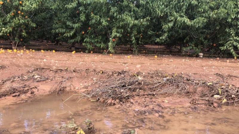 campos inundados tormentas yecla