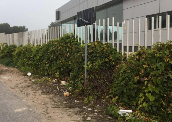 contenedores basura decarada