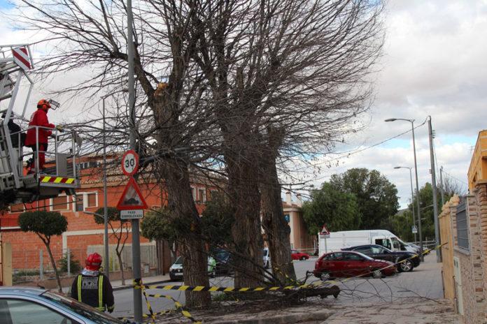 olmo avenida cartagena