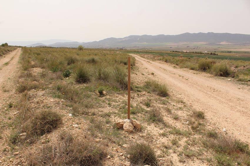 carteles de la ruta azorín