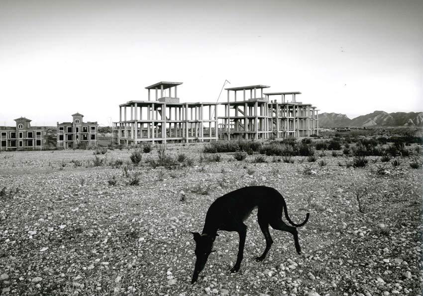 cuarto premio en el concurso de urbanizaciones fantasma