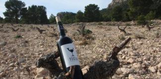 vino ecológico de yecla