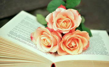 libros y rosas