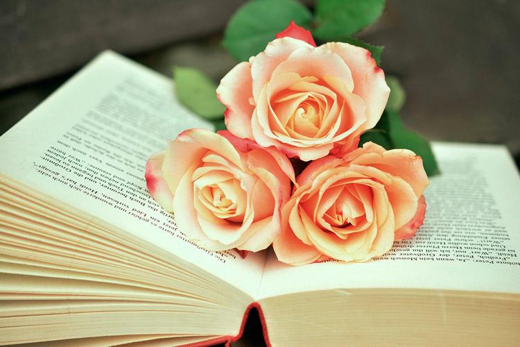 libros y rosas san valentín
