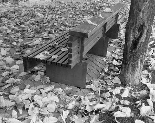 caída de las hojas otoño