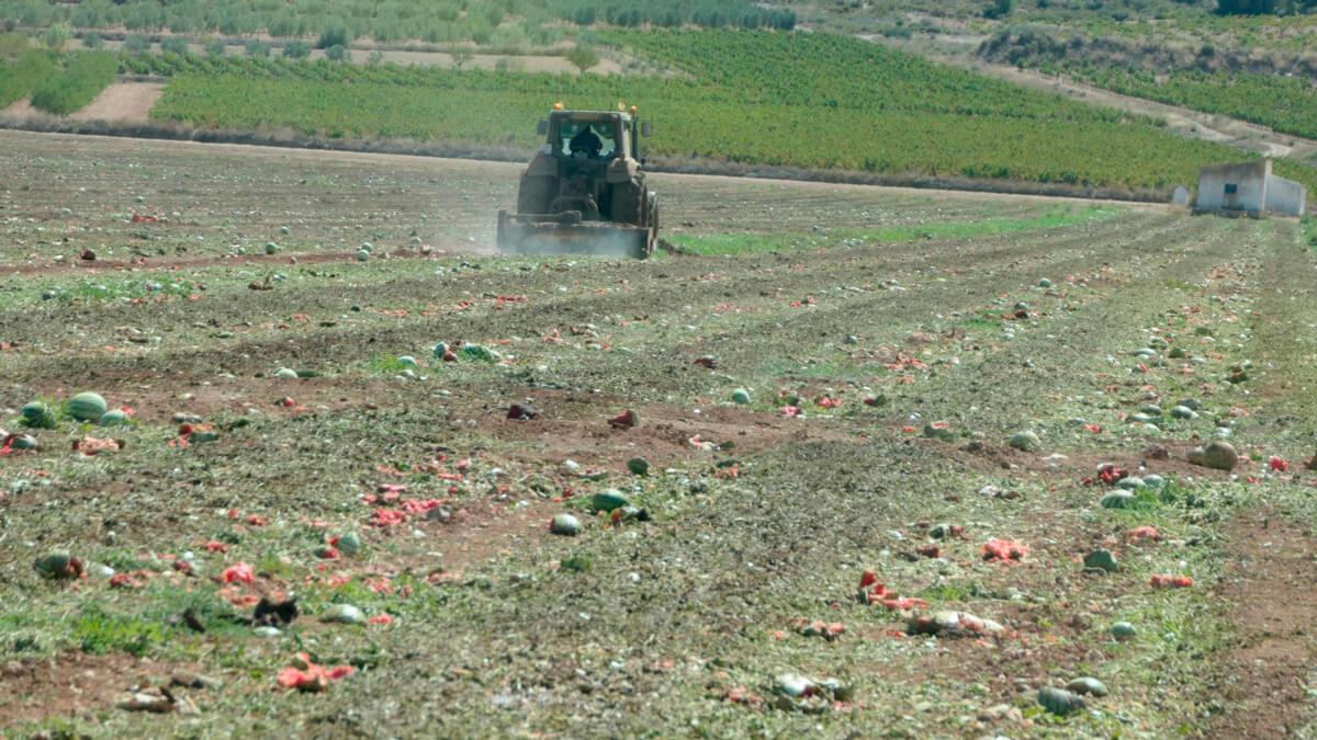 tractor sandias melones