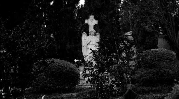 ángel exterminador día santos difuntos