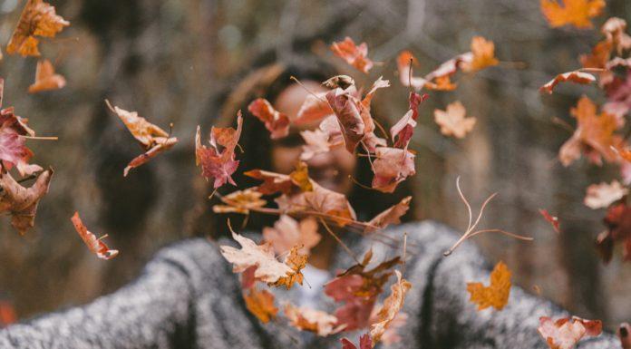 enfermedades de otoño