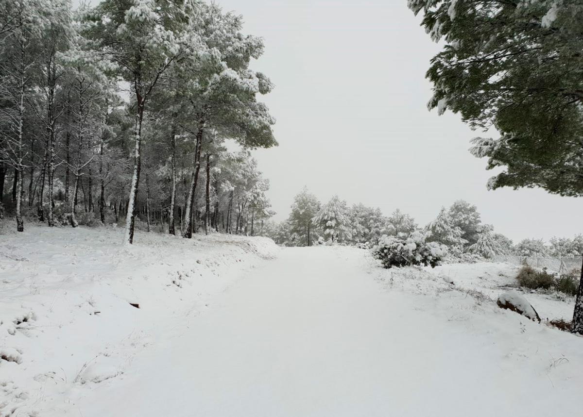 nieve en yecla