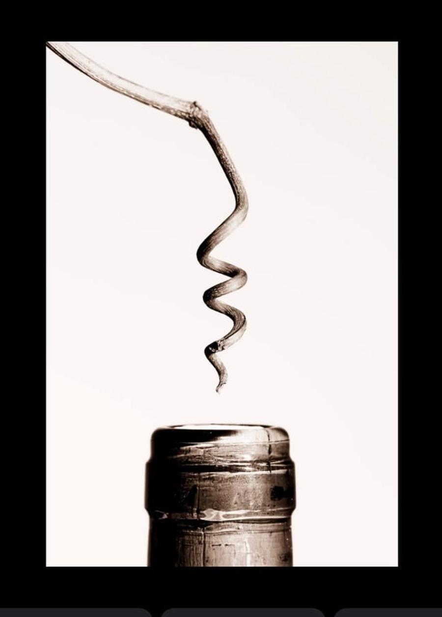 juan miguel ortuño Digital Wine Contest
