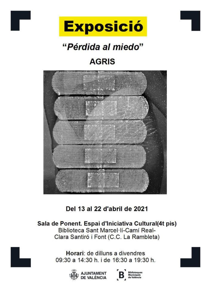 cartel de la exposición de agris