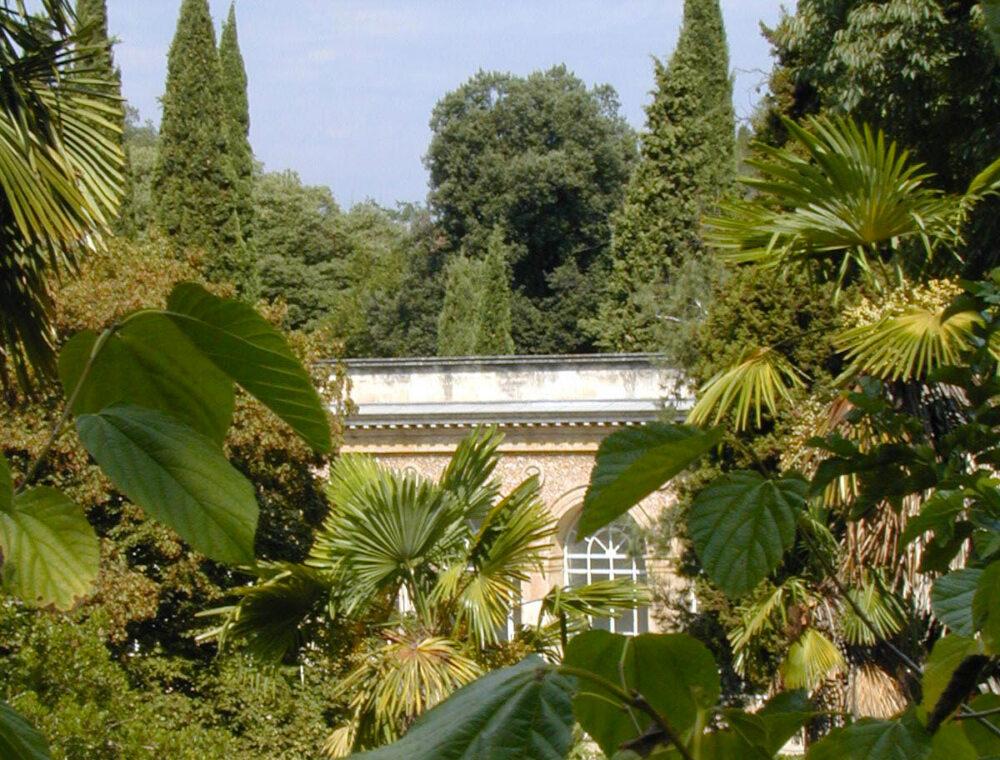 Motpellier-jardín-botánio-francia