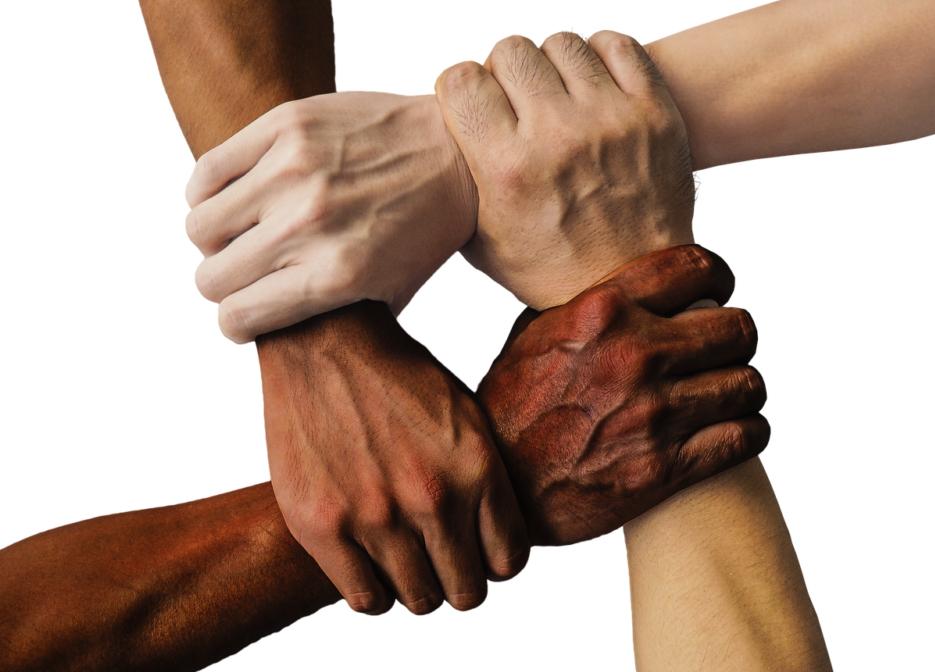 diversidad diversos