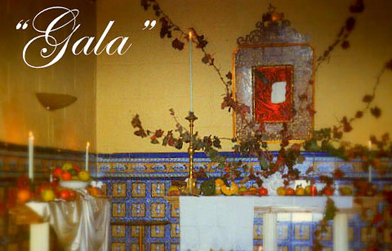 cafe-bar-gala-yecla
